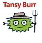 Tansy Burr